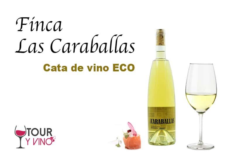 cata de vino ecológico
