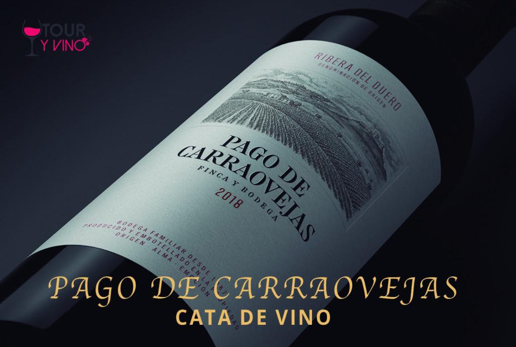 Cata de vino pago de carraovejas 2018